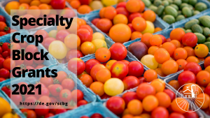 cherry tomatoes with the text Specialty Crop Block Grants 2021 overlayed with website https://de.gov/scbg